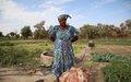 Jardin de Tarabangou à Tombouctou : un poumon de l'économie locale, symbole de résilience