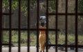 Gao : Les surveillants de prison des régions du Nord complètent une formation sur la sécurité