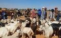 Patrouille de longue portée de la MINUSMA : les Casques bleus chez les populations d'Haoussa Foulane dans la Commune de Gabero